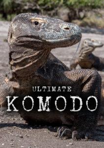Ultimate Komodo<p>(Brazil)