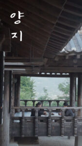 Yangji<p>(Korea)