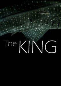The King<p>(Spain/Maldives)